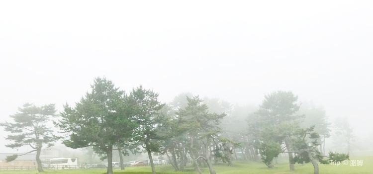 Tanesashi Coast1