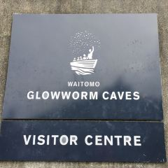 Waitomo Glowworm Caves User Photo
