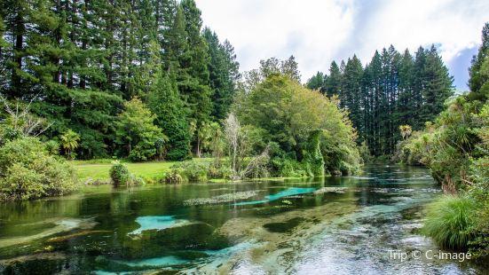 Hamurana Springs Recreation Reserve