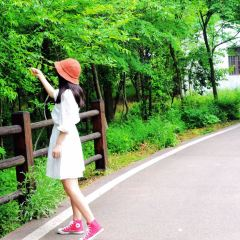 龍池山自行車公園用戶圖片