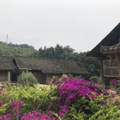 Nanlong Bouyei Ancient Village User Photo