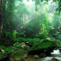 Mengyuan Fairyland User Photo