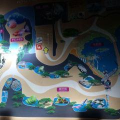 난창 해양공원 여행 사진