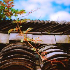 양가탕촌 여행 사진
