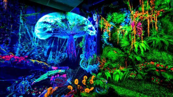 檳城黑暗3D熒光博物館