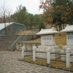 敦化市博物館用戶圖片