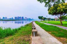延平公园-桃园市
