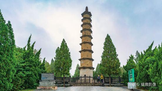 青屏山公園