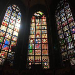 聖母主教座堂用戶圖片