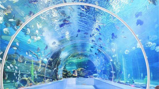 180度海底隧道