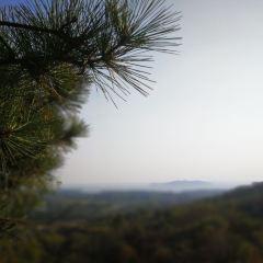 四頂山風景區用戶圖片