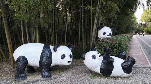 Anji Bamboo Expo Park