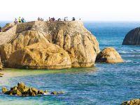 風景高大上,消費很平民,斯里蘭卡能給你一切美好