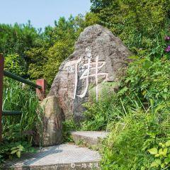 룽취안산 여행 사진