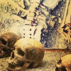 Bryggens Museum User Photo