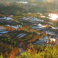 Laohuzui Terraced Field User Photo
