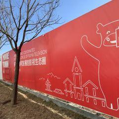 Dachang Shuhuayuan Park User Photo