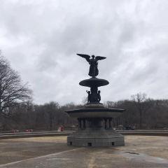 Pulitzer Fountain用戶圖片