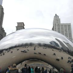 시카고 여행 사진