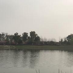 愛河景觀親水公園用戶圖片