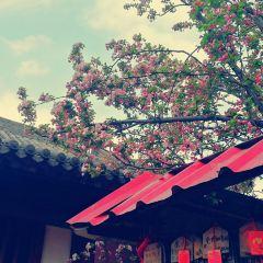 Fuqing Temple User Photo