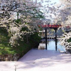 Hirosaki Castle Record Office User Photo