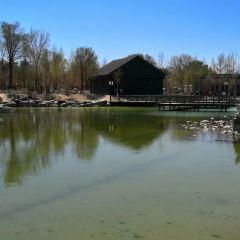 鯉魚山公園用戶圖片