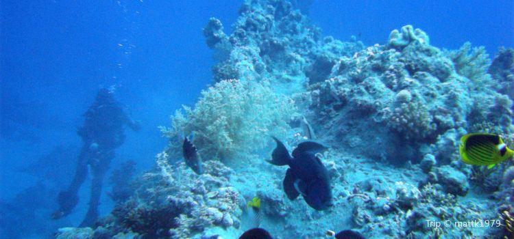 Cayman Brac Beach Resort2