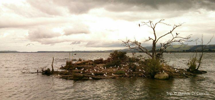 Sulphur Point2