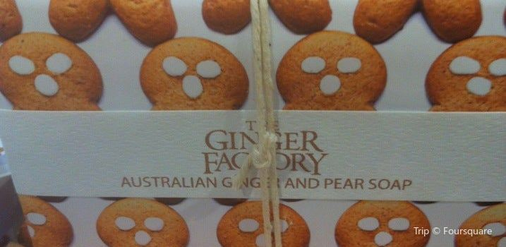 The Ginger Factory2