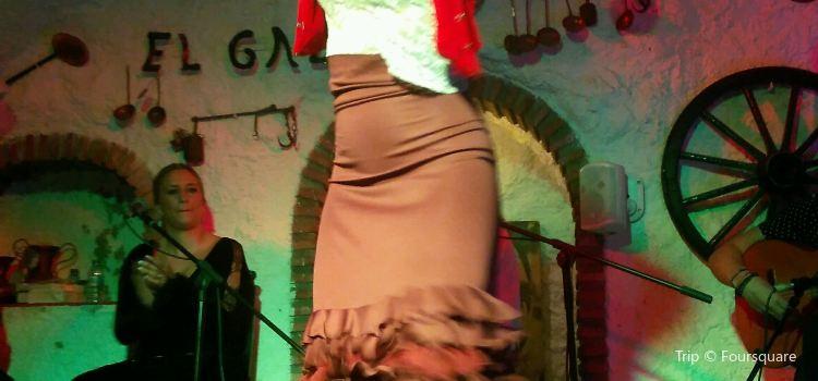 Venta El Gallo2