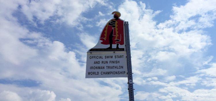 IRONMAN World Championship3