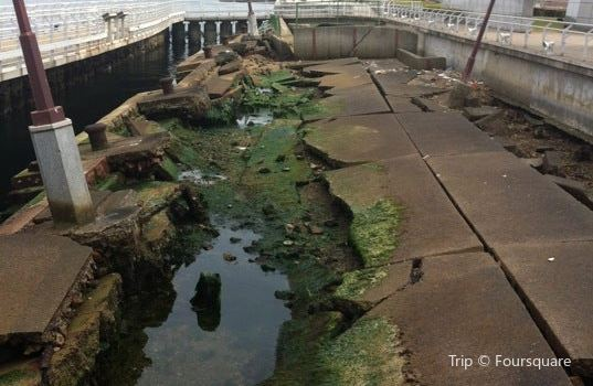 Port of Kobe Earthquake Memorial Park1