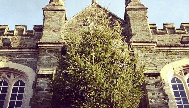 Tavistock Town Hall2