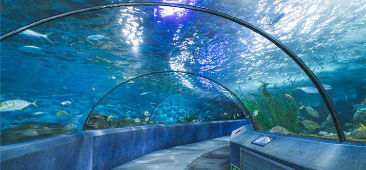 海底隧道3