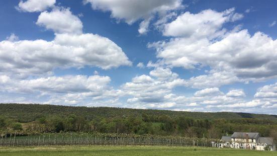 Bucks Valley Winery and Vineyards