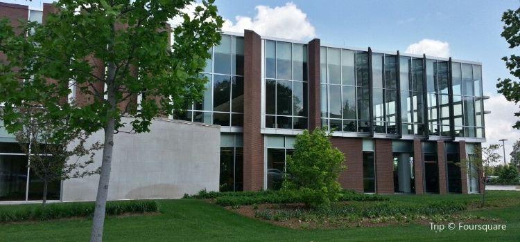 Champaign Public Library1