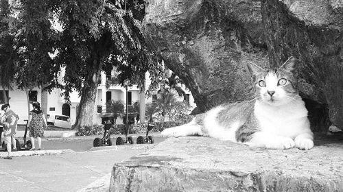 サンフアン門