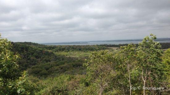 Cedar Ridge Preserve managed by Audubon Dallas.