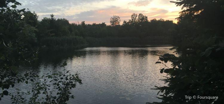 Mill Pond Park3