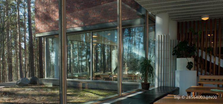 The Aalto House2