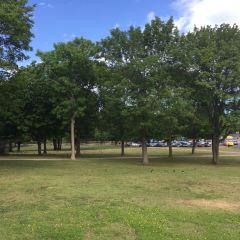 卡伊沃公園用戶圖片