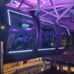 新加坡摩天觀景輪用戶圖片