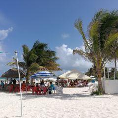 Ziggy Beach User Photo