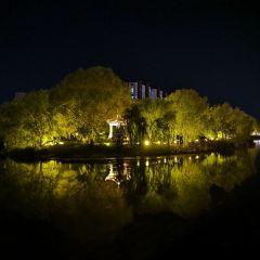 Zouchengshi Hujia Mountain Botanical Garden User Photo