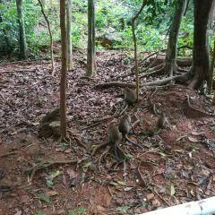 蘭卡威地質公園用戶圖片