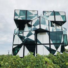The d'Arenberg Cube Restaurant用戶圖片