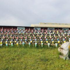 Dayu Tribe User Photo