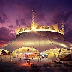 華特迪士尼世界太陽馬戲團用戶圖片