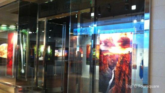 Peter Lik Gallery